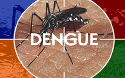 Possibility of Dengue Spreading…..