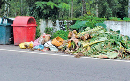 Classified Garbage Collection Program Begins Tomorrow