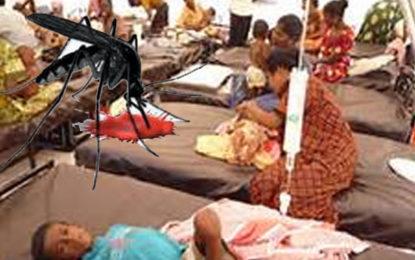 Dengue Death Toll Increases
