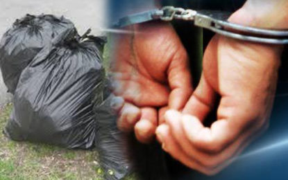 160 Arrested for Dumping Garbage