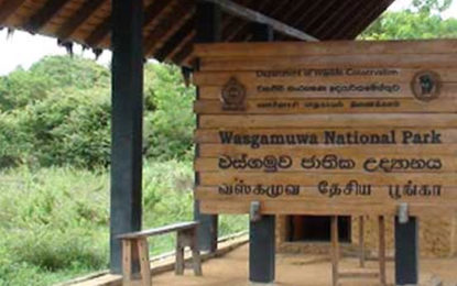 Underworld Gang Suspected to be the Master Mind  Behind Firearm Theft at Wasgamuwa