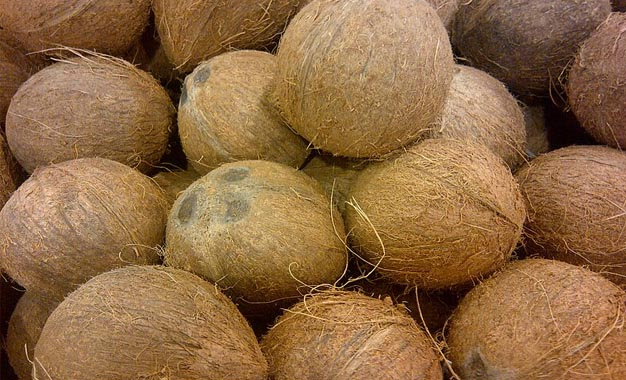 Legal Action against those selling coconut beyond fixed maximum retail price of Rs75/=