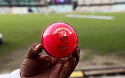 Decision On Day-Night Test Soon: BCCI