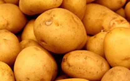 Potato Import Tax Increased