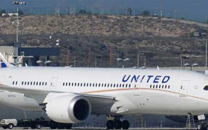 Criminal Investigation Launched into Dog's Death on US Flight