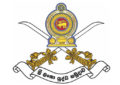 President promotes 38 Senior Army Officers to their next rank