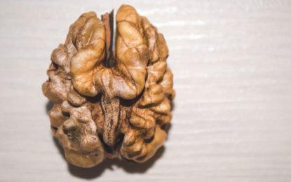 Brain-Boosting Foods That Improve Mental Clarity