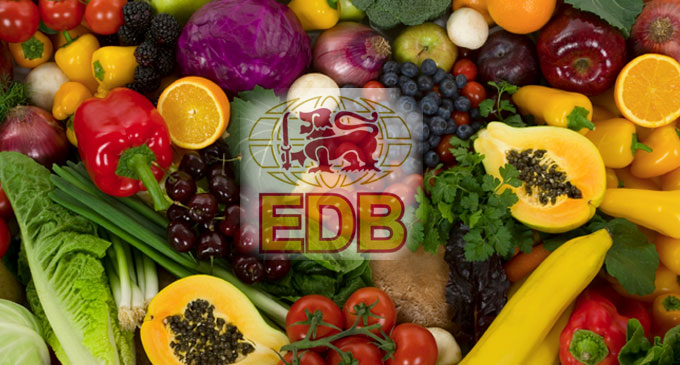 EDB seeks green light from China for Organic vegetable and fruit