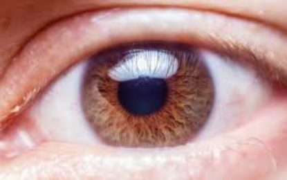 Using smartphone for eye check-up may lead to misdiagnosis