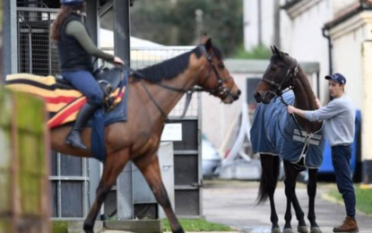 Racing to resume in Britain after equine flu shutdown