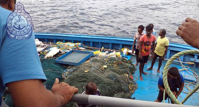 A turtle caught by Indian fishers set free by Navy [VIDEO]