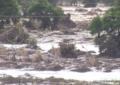 Cyclone Idai hits Zimbabwe, at least 31 people dead