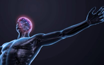 Neurofeedback leads to strengthening nervous system