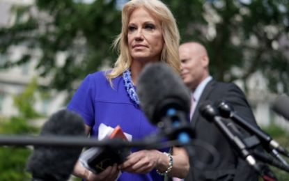US watchdog calls for Trump aide Kellyanne Conway's removal