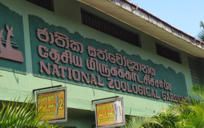 Dehiwala Zoo Will be Opened For the Public at Night From 22nd September