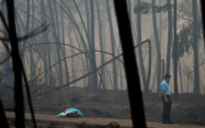 Portugal forest fires kill 62 near Coimbra
