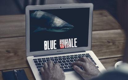 Blue Whale Challenge: Schools On Alert, Teachers Keep Watch On Students