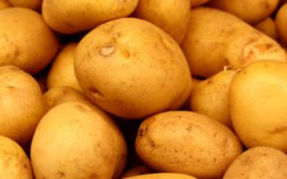 Potato Import Tax Increased