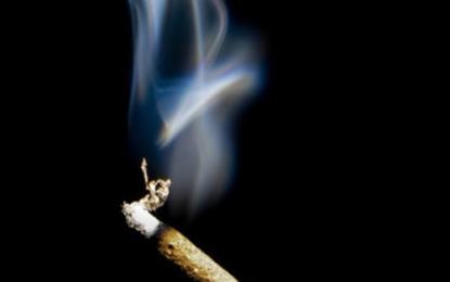 Smokers notice health warnings more on plain packs