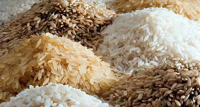 Price of Nadu and Samba rice reduced