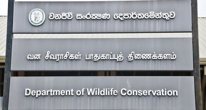 Wildlife bungalows and campsites closed