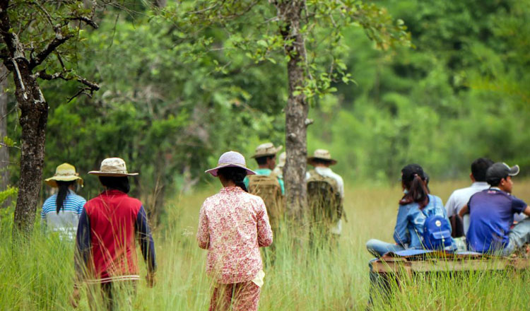 USAID contribute to saving forests in Cambodia